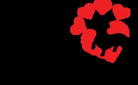 Welcome To Heartfelt Dachshunds!   Heartfelt Dachshunds